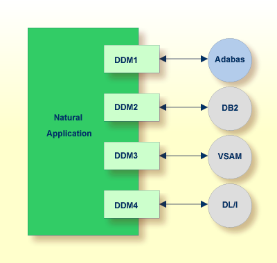 dbms structure. structures in the specific